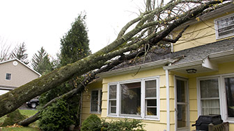Why it may be worth the sacrifice to pay for home damage out of pocket