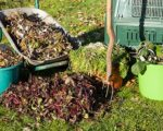If you want to go green and use your trimmings in a way that will help the environment, rather than hurt it, here are some inventive uses for your yard waste.